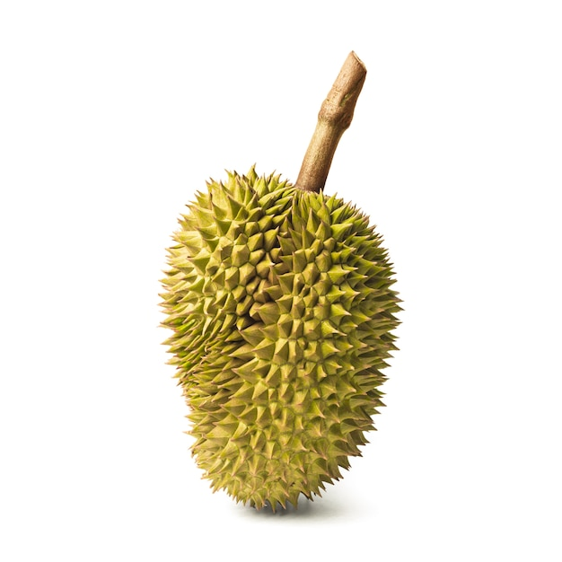 Durian isolated on white background. king of fruits in thailand. Premium Photo
