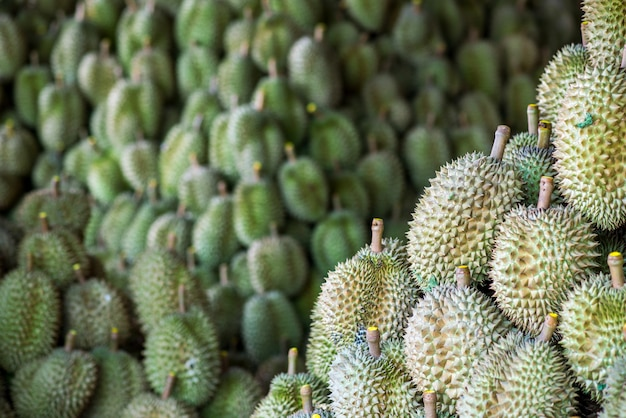 Durian, king of fruit Premium Photo