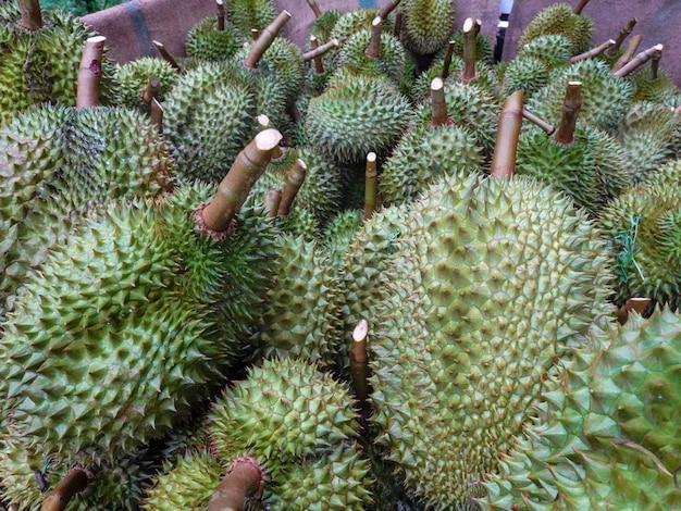 Durian, thai fruit king, is exporting to china Premium Photo