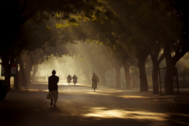 Dusty road of rural scene Premium Photo