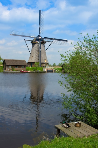 Dutch windmill in kinderdijk, unesco world heritage site, holland Premium Photo
