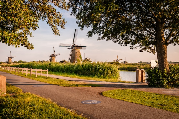 道路の近くのオランダの風車 Premium写真