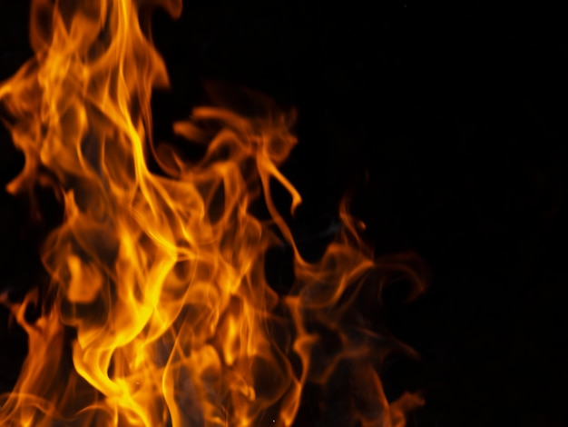 Dynamic vibrant flames on black background Premium Photo