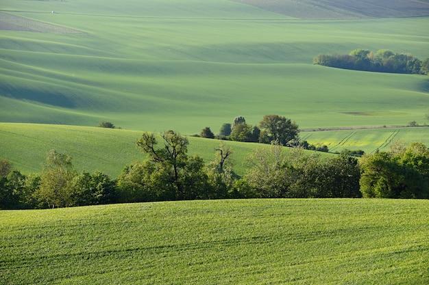 Моравская тоскана - красивый весенний пейзаж в южной моравии недалеко от города кийова. чешская республика - e Бесплатные Фотографии