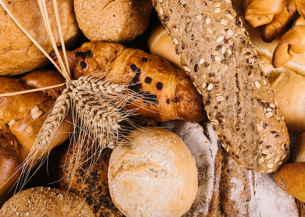Ear of wheat on whole grain loaves of different bread Free Photo
