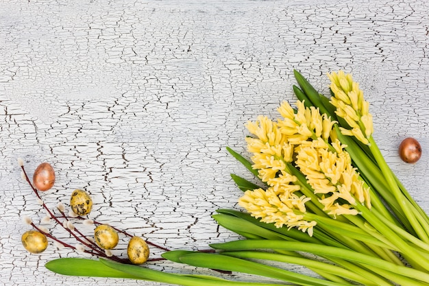 Easter background. yellow hyacinths, quail eggs and willow branch on blue wooden table. Premium Photo