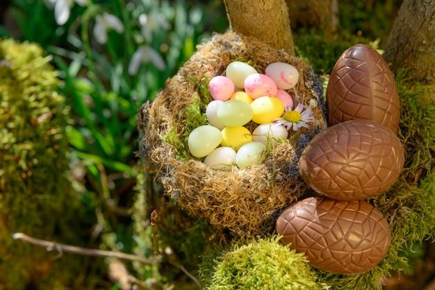 Easter eggs in a garden Premium Photo