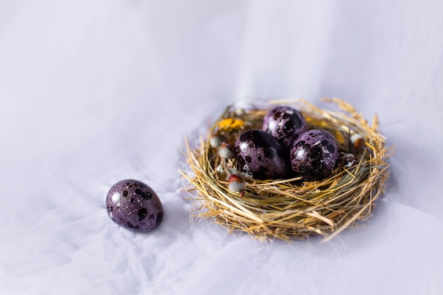 Easter eggs in a nest and with flowers on  blue wall. Premium Photo