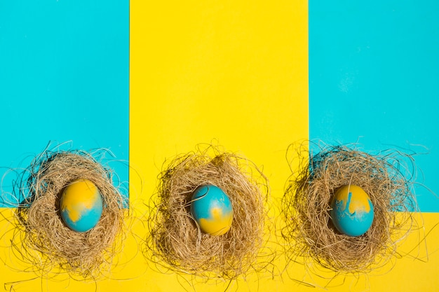 Easter eggs in nests on table Free Photo