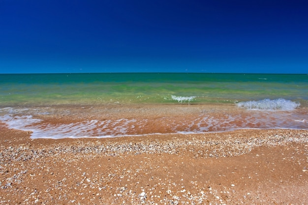 Easy to surf on a sandy shore and the sun Premium Photo