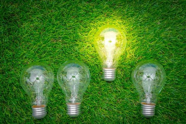 Ecoconcept eco concept - light bulb grow in the grass photo | free download