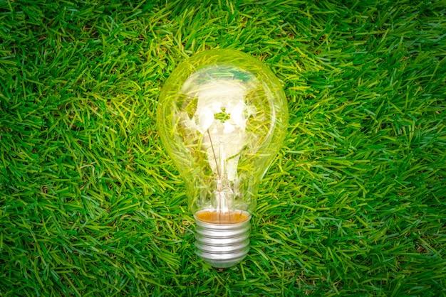 에코 개념-전구는 잔디에서 성장 무료 사진