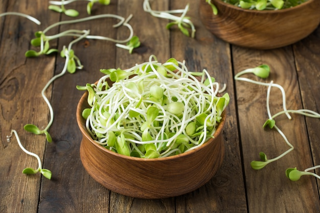 Egetable young sunflower sprouts on wood Premium Photo