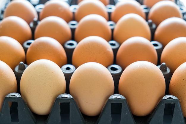 Egg tray black plastic stack Premium Photo