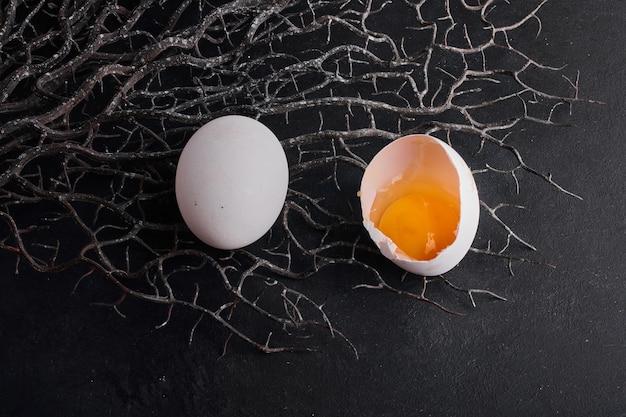 人工巣の黒いスペースに分離された卵黄。 無料写真
