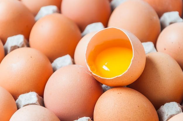 Eggs top view Free Photo