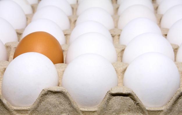Eggs white and brown Premium Photo