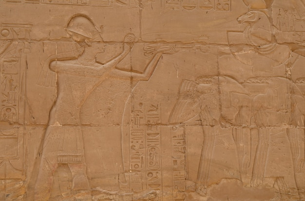Egyptian carvings at the temple of luxor Premium Photo