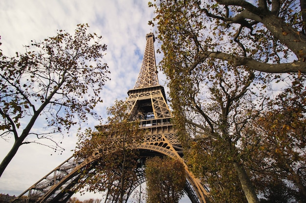 Eiffel tower's view from the park Free Photo