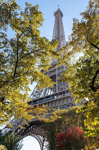 Эйфелева башня через деревья Premium Фотографии