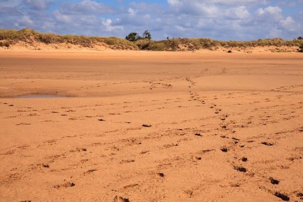 El puntalビーチ、サンタンデル Premium写真