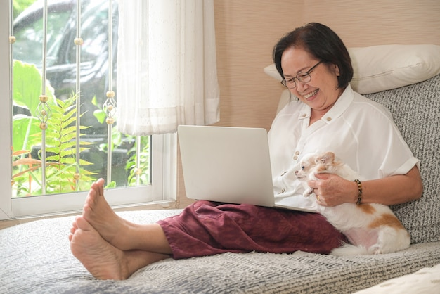 Elderly asian woman sitting on a sofa is using a laptop. she smiled happily, chihuahua dog sat on the side. Premium Photo