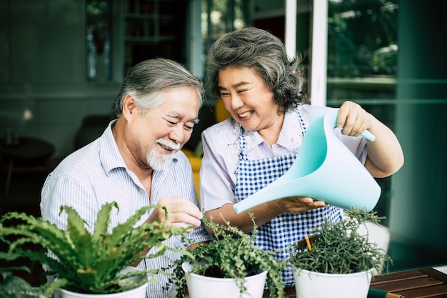 Elderly couples talking together and plant a trees in pots. Free Photo