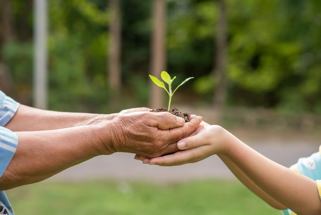 Elderly person and children holding plant Free Photo
