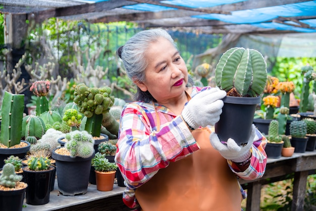 Elderly woman looking at integrity of cactus tree Free Photo