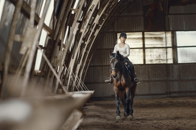 Elegant girl in a farm wiith a horse Free Photo