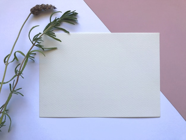 Elegant Pink And White Watercolor Paper Template With Flowers Photo
