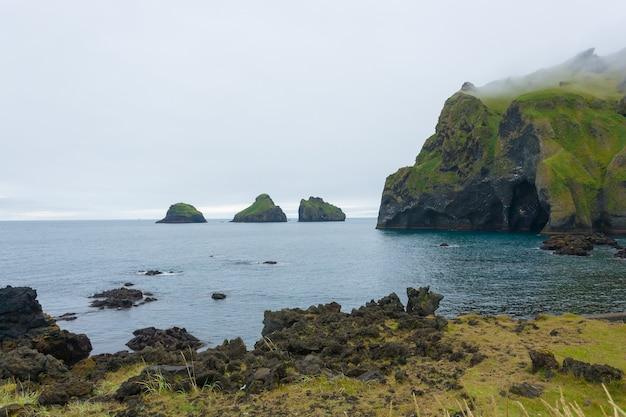 象の形の岩、ヴェストマン諸島の島のビーチ、アイスランド Premium写真