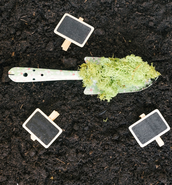 Elevated view of blank slate; moss on shovel over black dirt Free Photo