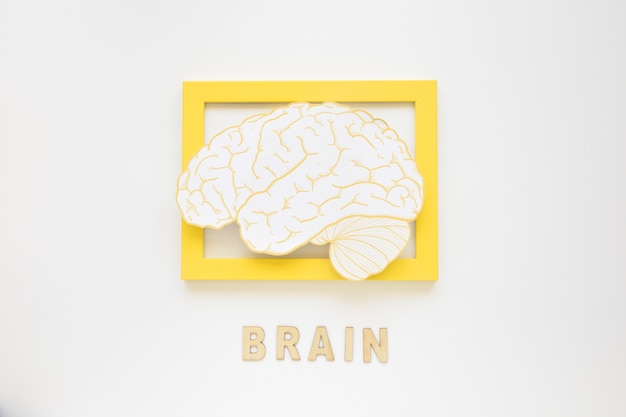 Elevated view of brain frame with text Free Photo