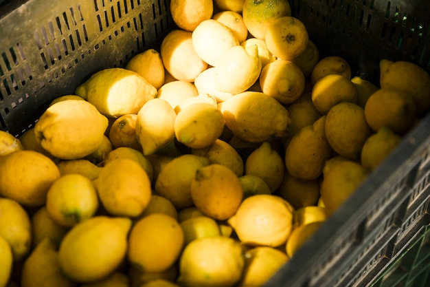 Elevated view of fresh juicy lemon in crate at fruit market Free Photo