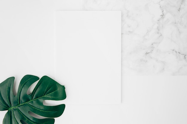An elevated view of green monstera leaf on white blank card over the desk Free Photo