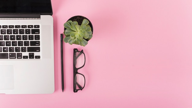 Elevated view of laptop; spectacles; pencil and potted plant on pink surface Free Photo