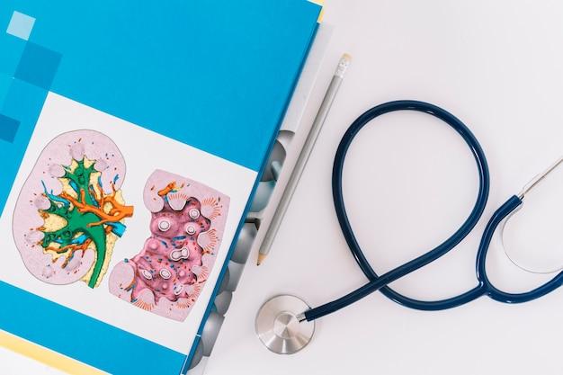 Повышенный вид книг; карандаш и стетоскоп на белом фоне Premium Фотографии