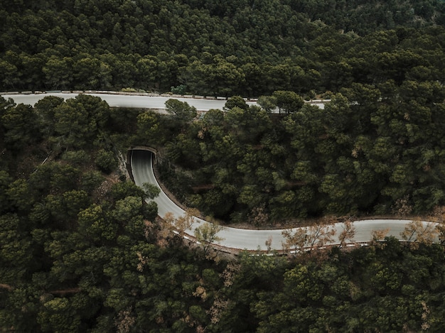 Elevated view of road in forest landscape Free Photo