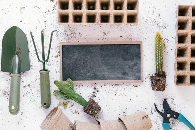 Elevated view of shovel; rake; pruner; cactus plant peat tray; pot and blank slate over messy white background Free Photo