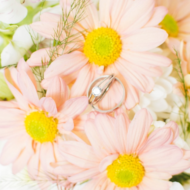An elevated view of silver diamond wedding rings on pink gerbera flower Free Photo