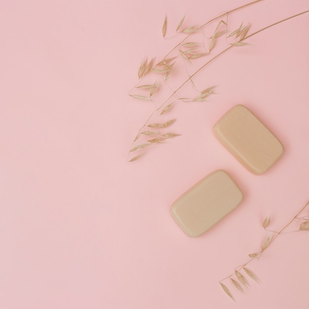 Elevated view of soaps and husk on pink surface Free Photo