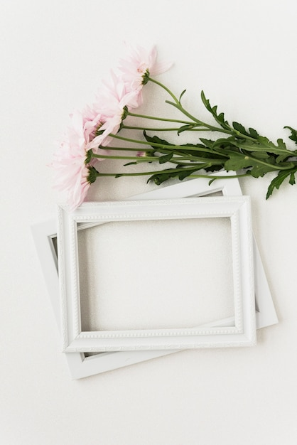 Elevated view of two picture frames and pink flowers on white surface Free Photo
