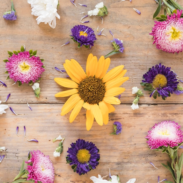 Elevated view of various colorful flowers on wooden surface Free Photo