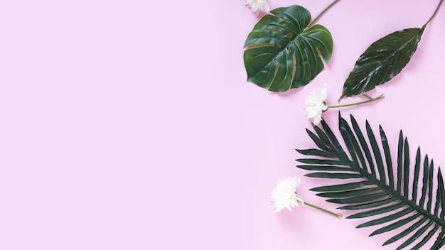 Elevated view of white flowers and artificial green leaves on purple background Free Photo