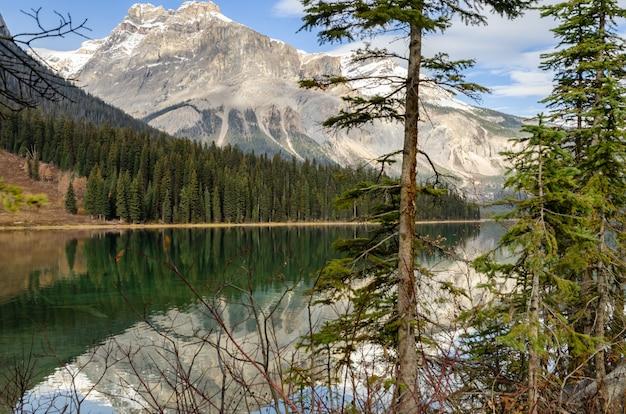 Emerald lake in yoho national park, british columbia, canada Premium Photo
