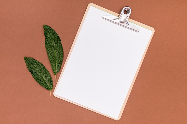 Empty clipboard mock-up with walnut leaves Free Photo