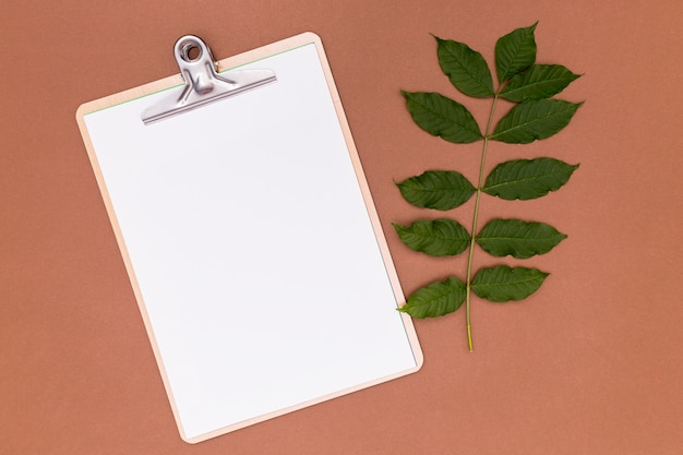 Empty clipboard with twig leaves Free Photo