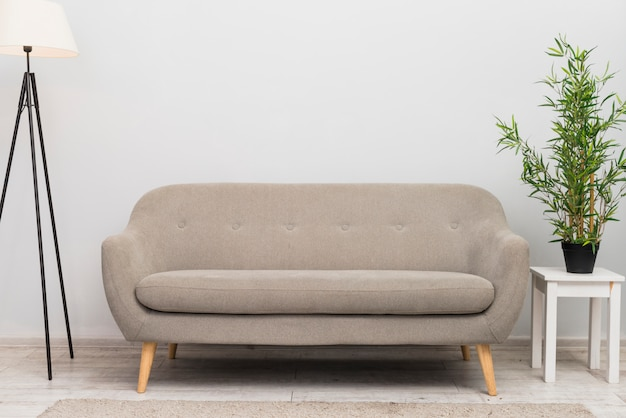 An empty cozy sofa in the living room near the plant pot on stool Premium Photo