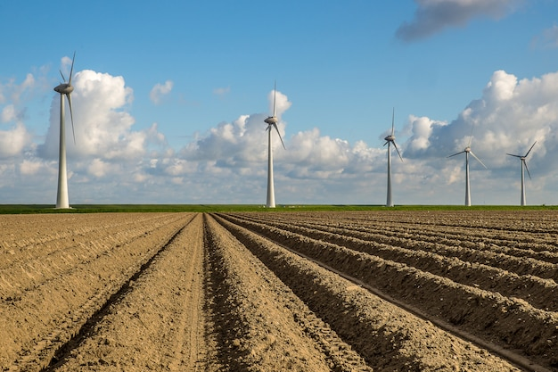 Empty field with windmills in the distance under a blue sky Free Photo